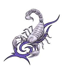 мужские тату эскизы скорпионы