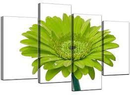 image is loading large lime green gerbera daisy canvas wall art  on gerber daisy canvas wall art with large lime green gerbera daisy canvas wall art pictures prints xl