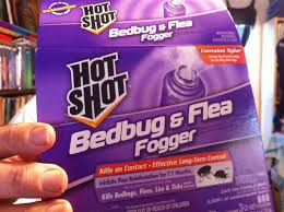 How to Bomb for Bedbugs Fleas Lice & Ticks Live Demonstration