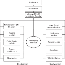 University Hospital Organizational Chart Organizational Chart Of The Health Care System 2003