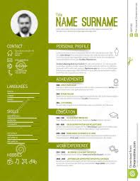 13 Best Profesional Images On Pinterest Resume Design Cv Template