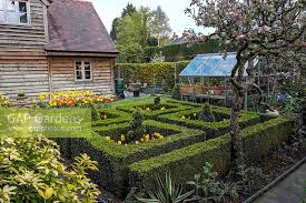 a small formal spring garden with old apple trees a small greenhouse and a box