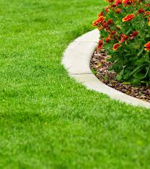Welcome To Madison Lawn Care Madison Sioux Falls