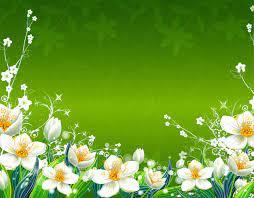 Green Flower Background Hd ...