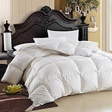 Amazon.com: Egyptian Bedding 1200 Thread Count King 1200TC ... & Egyptian Bedding 600-Thread-Count Egyptian Cotton Siberian Goose Down  Comforter, 750 Fill Adamdwight.com