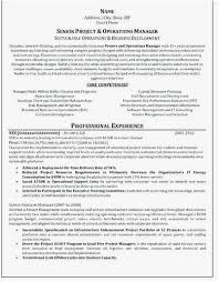 Best Resume Writing Service Reviews Simple Writing Professional