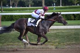 Understanding Beyer Speed Figures Getting Out Of The Gate