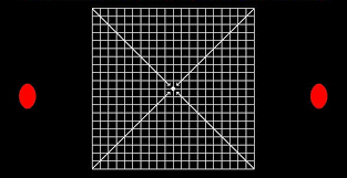 Types Of Amsler Grid Chart What Causes Distortion Symptoms Of Macular Diseases