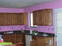 kitchen purple wall theme and dark brown wooden kitchen cabinet also black countertops stunning