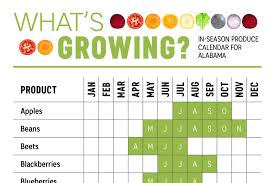 California Growing Season Chart Whats Growing In Alabama Produce Calendar Infographic