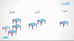 """Résultat de recherche d'images pour """"المفرد و المثنى و الجمع ./الخامس ابتدائي"""""""