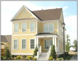 superb exterior house lights 4. Brown Roof Exterior Paint Color Photo 8 Of House Ideas Superb Colors For With Lights 4 E