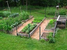 Small Picture 20 best Raised Vegetable garden design images on Pinterest