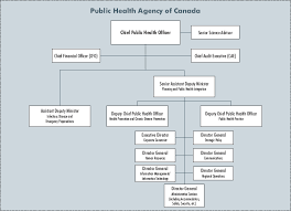Chicago Department Of Public Health Organizational Chart Public Health Public Health Organizational Structure