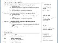 Resume Word Template – 29 Word Resume Template Example – Resume ...
