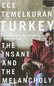 ece temelkuran provides a gripping day by day account of the attempted coup against the turkish government as it happened