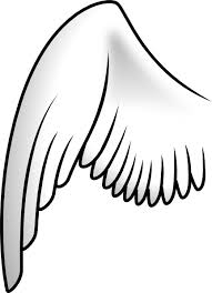 hawk wing clipart.  Clipart Hawk Wing Clipart  Library  Free Images And I