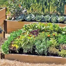 4x8 raised bed vegetable garden layout. Fine Garden In 4x8 Raised Bed Vegetable Garden Layout E