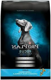 Dog Breeds Puppy Food Puppyfood Org