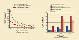 Animal Activity Chart Physical Activity Reduces Return To Cocaine Seeking In