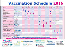 immunization card in india vaccination chart ohye mcpgroup co