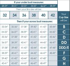 Bra Size Chart In Pakistan Premium Quality Bra Imported Secret Possessions