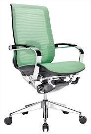 Beautiful Office Chairs » Purchase Ergonomic Mesh Office Chairs ...