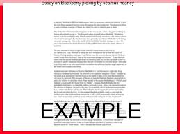seamus heaney essays essay on blackberry picking by seamus heaney term paper writing