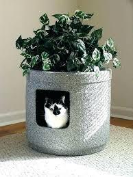 cat litter box furniture fancy enclosure home diy plans
