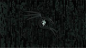 Kali Linux Wallpaper 4k