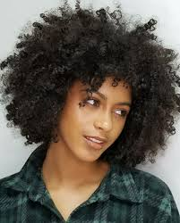 Curly Hair Designs Twisted Out Natural Short Natural Hair Styles In 2019