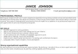 Resumes Personal Statements Personal Statement For Resume Examples Sample Of Profile In Resume