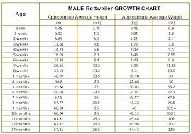 20 Month Old Weight Chart Reasonable Average Weight Gain For Infants Chart Baby Height