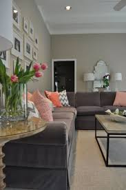 Peach Paint Color For Living Room Wall Paint Colors Combinations Home Combo