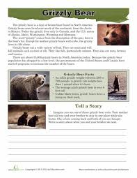 Grizzly Bear Classification Chart Grizzly Bear Facts Grizzly Bear Facts Bear Facts For Kids