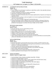 Iib Sample Resumes Developer Senior Resume Samples Velvet Jobs 2