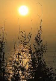 فجر ، شمس ، شروق الشمس ، الصيف ، طبيعة ، غروب الشمس ، المناظر الطبيعيه ،  سماء ، السفر ، ضوء الشمس ، في الخارج