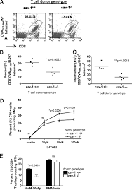 Caveolin 1 Orchestrates TCR Synaptic Polarity Signal Specificity.