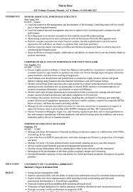 Portfolio Strategy Resume Samples Velvet Jobs
