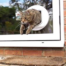automatic cat doors are useful gimmicks if you want your cat to become an indoor and or outdoor pet it is scientifically proven that when cats have the