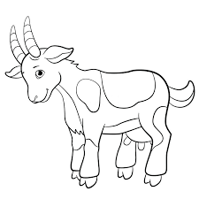 Goat Cute Little Baby Animal Coloring Pages Print Coloring Coloring
