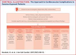 Cocaine Scale Chart The Cardiovascular Effects Of Cocaine Sciencedirect
