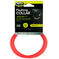 Red Blinking Light On Invisible Fence Collar Nite Glo Flashing Dog Collar Red