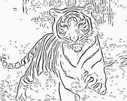 Small Picture Tiger Color Pages Pilular Coloring Pages Center