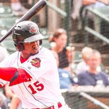 Washington Nationals' Victor Robles in ...