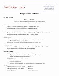 50 Elegant Australian Resume Format Sample Resume Writing Tips
