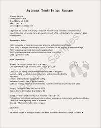 Resignation Letter Sample Email India Fresh Simple Format Resume