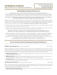 example executive resume non profit executive resume sample executive  director resume executive resume samples free