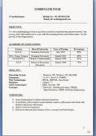 Formatos De Curriculum Vitae Gratis Sample Template Example