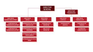 Trinity Industries Organizational Chart Haut De Gamme